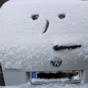 SnowWindscreen