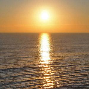 Sunrise-Alex-Murphy-fleet-news