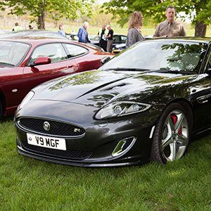 Big cats to prowl into Beaulieu for Simply Jaguar