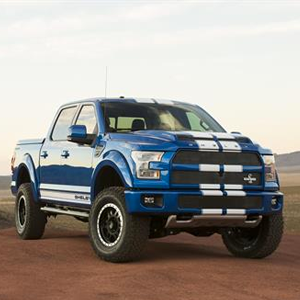 Shelby F150 Road Truck