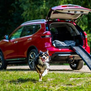 Nissan X-TRAIL - Paw Pack accessory kit