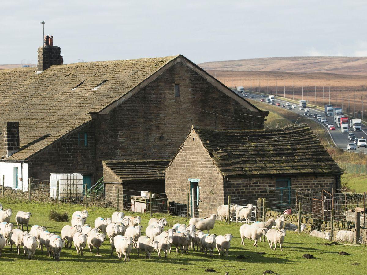 Stott Farm